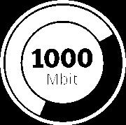 1000 Mbit